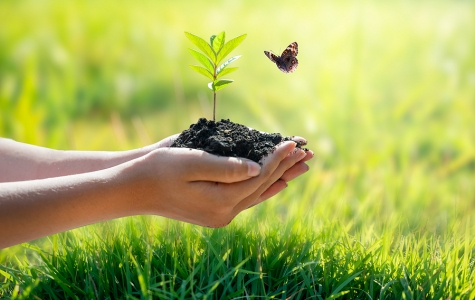 ESG Investing Risks & Compliance Implications
